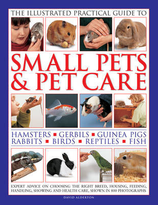 Illustrated Practical Guide to Small Pets & Pet Care by David Alderton