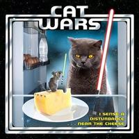 Cat Wars by Sellers Publishing