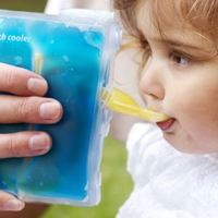 Cherub Baby: On The Go Food Pouch Warmer/Cooler image