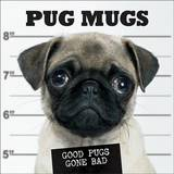 Pug Mugs by Willow Creek Press