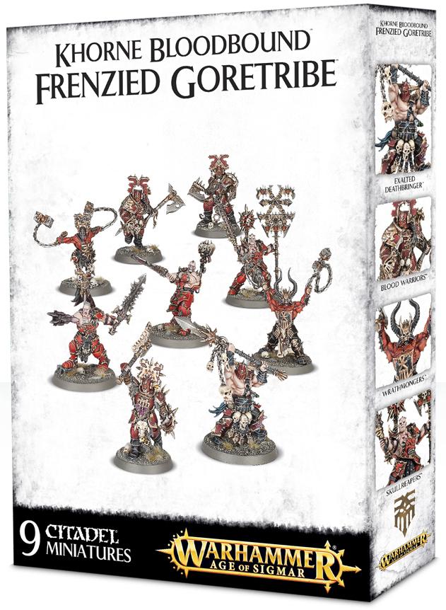 Warhammer Age of Sigmar: Khorne Bloodbound Frenzied ...