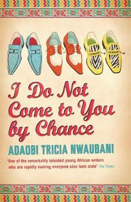 I Do Not Come to You by Chance by Adaobi Tricia Nwaubani image