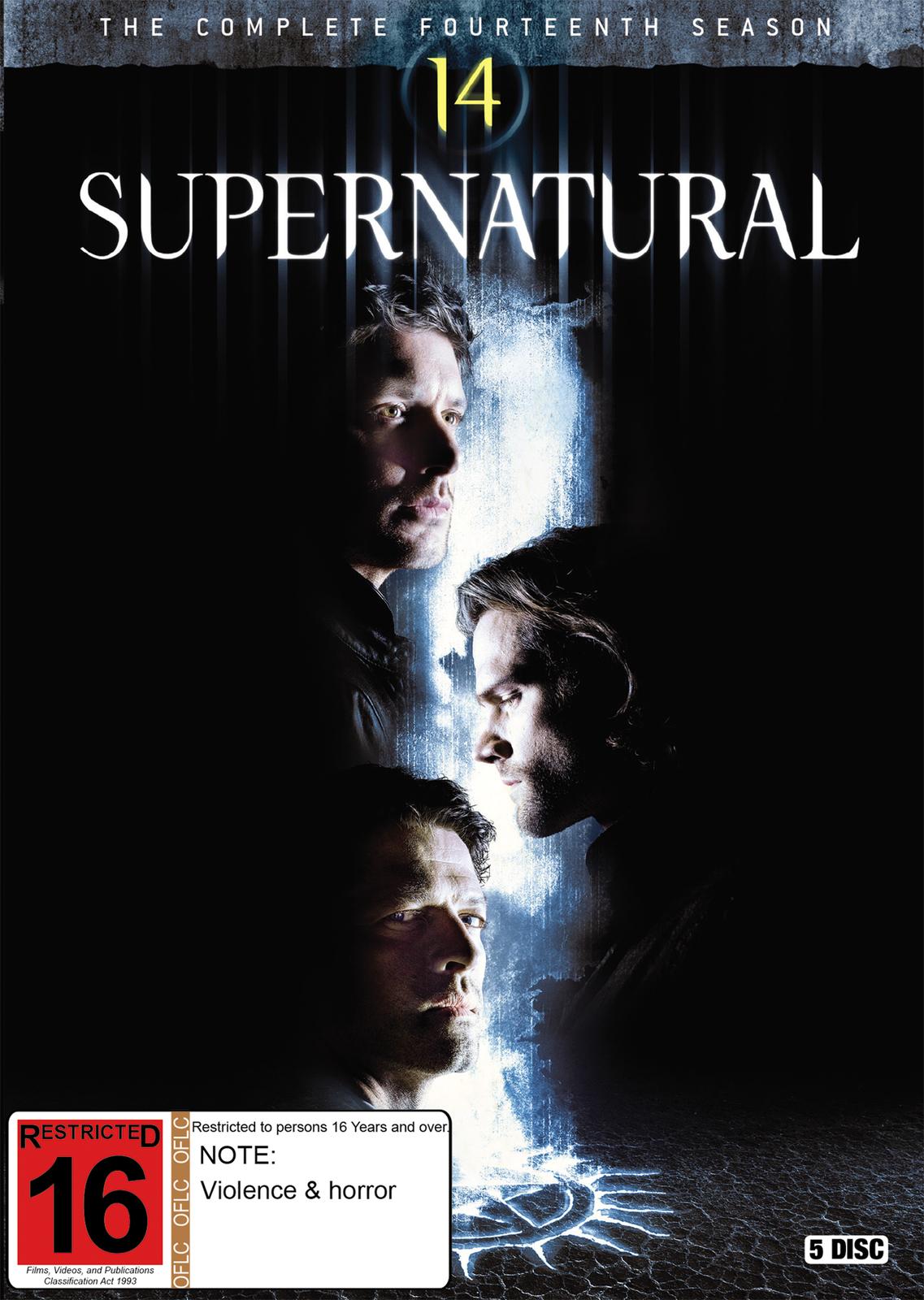 Supernatural: The Complete Fourteenth Season on DVD image