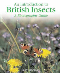 British Insects by Sally Morgan image
