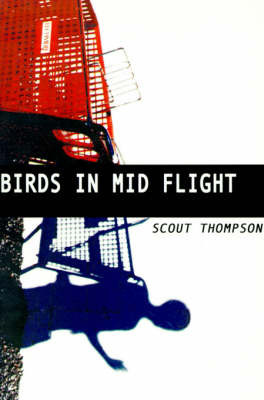 Birds in Mid Flight by Scout Thompson