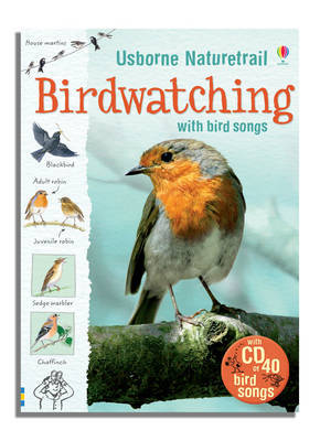 Birdwatching by Kirsteen Rogers