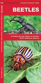 Beetles: An Introduction to Familiar North American Species by Senior Consultant James Kavanagh (Senior Consultant, Oxera Oxera Oxera)