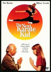The Next Karate Kid on DVD