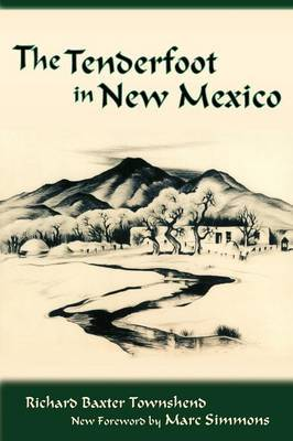 The Tenderfoot in New Mexico by R. B. Townshend image