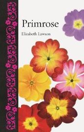 Primrose by Elizabeth Lawson
