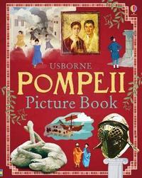 Pompeii Picture Book by Struan Reid