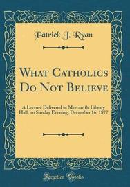 What Catholics Do Not Believe by Patrick J Ryan image