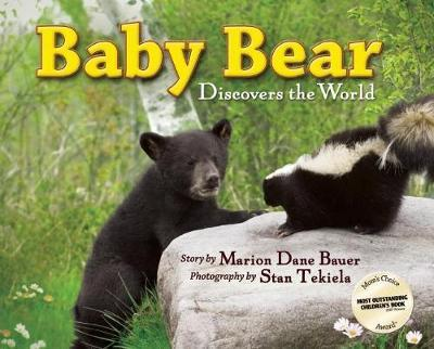 Baby Bear Discovers the World by Marion Dane Bauer