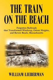 The Train on the Beach by William Lieberman image