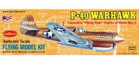 P40 Warhawk 1/30 Balsa Model Kit image