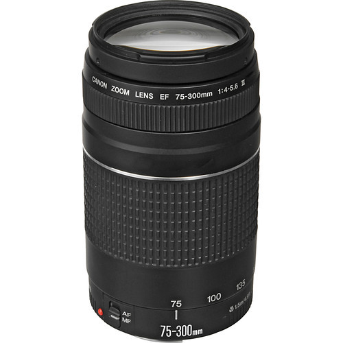 Canon EF 75-300mm f/4-5.6 III Telephoto Zoom DSLR Lens image