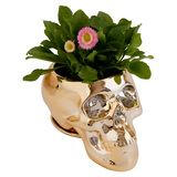 Day of the Dead Skull Planter (Gold)