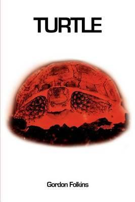 Turtle by Gordon Folkins
