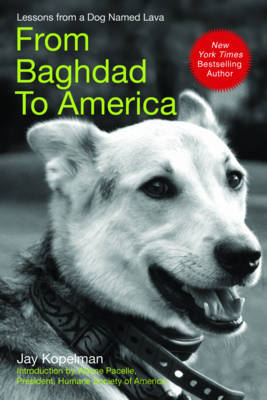 From Baghdad to America by Jay Kopelman image