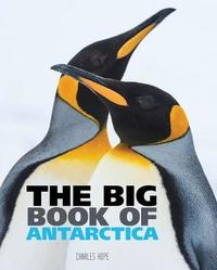 Big Book of Antarctica by Wild Dog Books