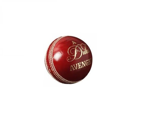 Dukes Avenger (142gm) Match Ball