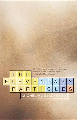 The Elementary Particles by Houellebecq Michel