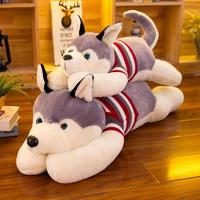 Husky with Sweater (70cm)