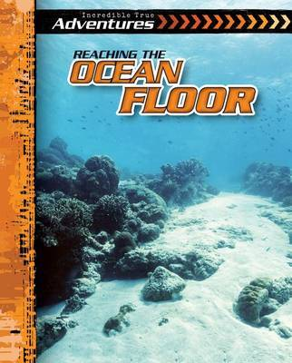 Reaching the Ocean Floor by Therese Shea