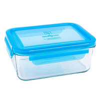 Glass Lunch Cube - Blueberry (480ml) image