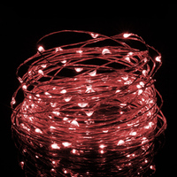 5m USB or Battery Powered LED Copper Wire String Lights- Red