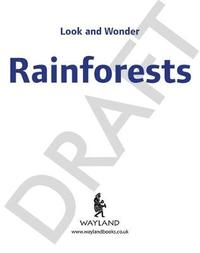 Look and Wonder: Incredible Rainforests by Kay Barnham image