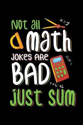 Not All Math Jokes Are Bad Just Sum by Tsexpressive Publishing
