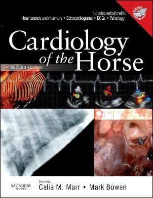 Cardiology of the Horse