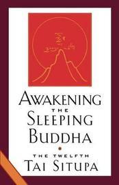 Awakening The Sleeping Buddha by Pema Donyo Nyinche