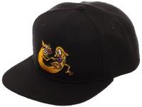 Nickelodeon: Catdog Logo - Snapback Cap