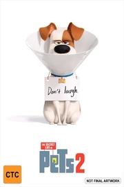 The Secret Life of Pets 2 on DVD image