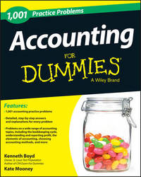 1,001 Accounting Practice Problems For Dummies by Kate Mooney