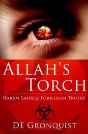 Allah's Torch by DE Gronquist image