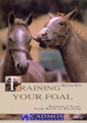 Training Your Foal by Renate Ettl image