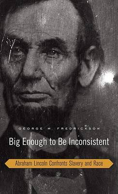 Big Enough to be Inconsistent by George M Fredrickson image