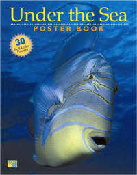 Under the Sea Poster Book by of,Storey,Publishing Editors