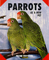 Parrots as a New Pet by William Wentworth