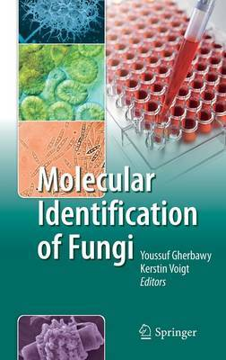 Molecular Identification of Fungi image