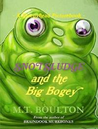 A Sleepyhead Picturebook. an Under the Bed Book by M.T. Boulton