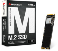 1TB BIOSTAR M700 M.2 NVMe PCIe SSD