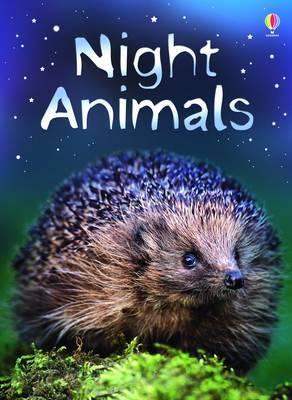 Night Animals by Sue Meredith image