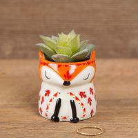 Natural Life: Critter Succulent - Fox