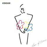 Man of Colours by Icehouse