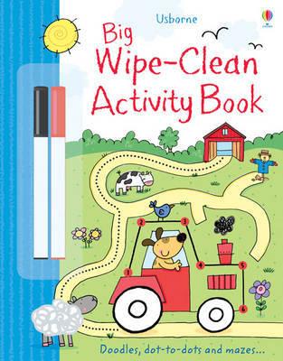 Big Wipe Clean Activity Book by Sam Taplin