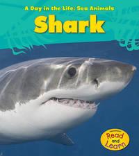 Shark by Louise A Spilsbury